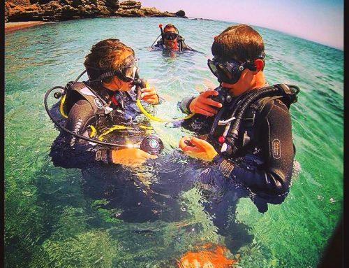 Programme Scuba Diver