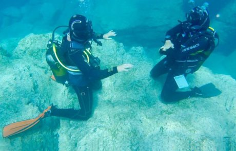 Diving Courses_