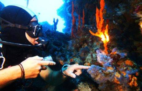 Try Scuba Diving_Notos_Mare_Sfakia_Diving_Center_Chania_Chora_Sfakion